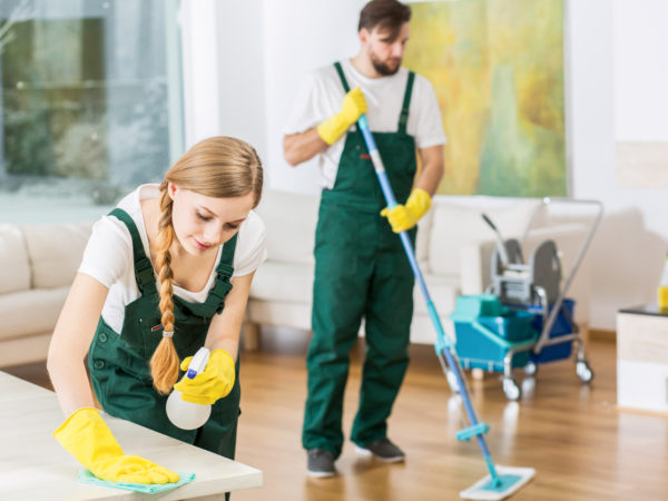 REASONS WHY YOU SHOULD HIRE A PROFESSIONAL CLEANER